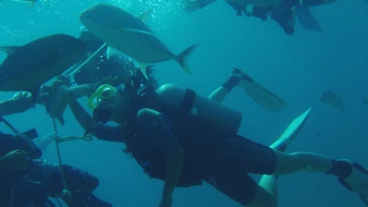 關島體驗水肺潛水